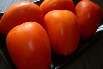 赤系トマト.jpg